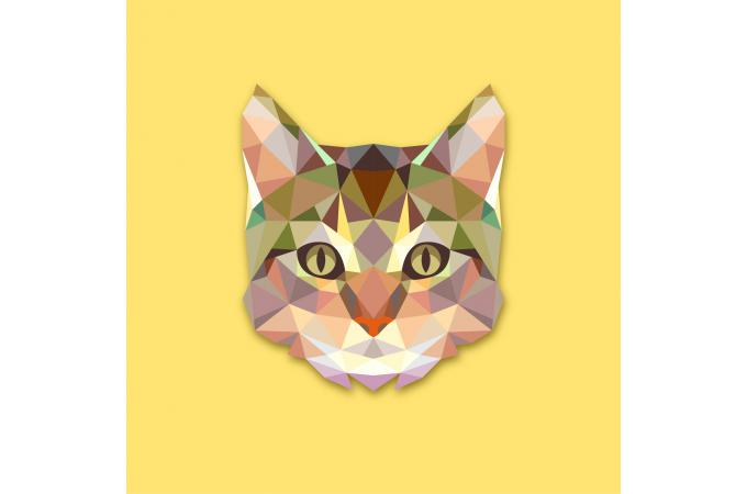 Tableau Animaux Chat Jaune 60X60 SIENNA SoFactory