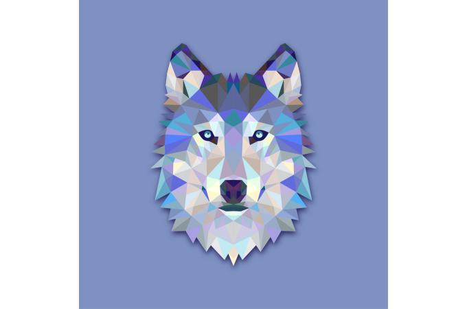 Tableau loup design 3 tableau animaux loup bleu