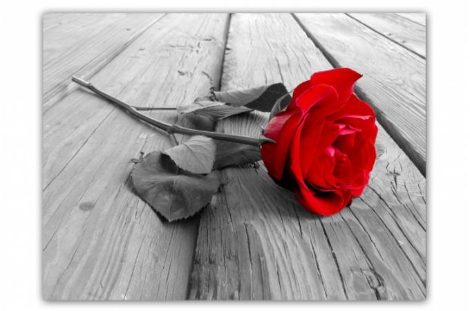 tableau romantique rose rouge x cm maeva d co design sur sofactory. Black Bedroom Furniture Sets. Home Design Ideas