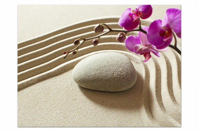 """Résultat de recherche d'images pour """"zen orchidée"""""""