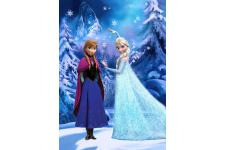 Tableau Impression Reine Des Neiges LED Et Paillettes 50x70 FREEZE SoFactory