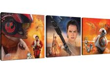 Triptyque Impression Star Wars Force 3/25x25 ESCURO